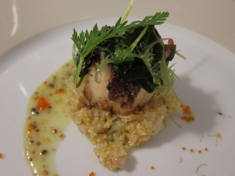 Scallop with seared foie gras and quinoa